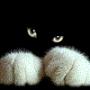 Мармеладка